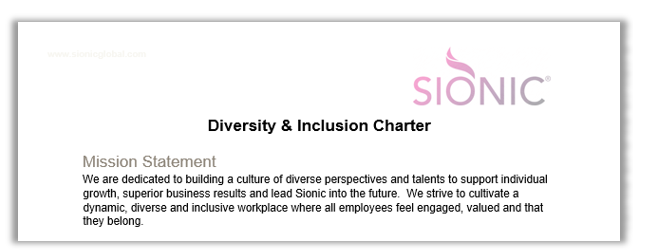 Diversity & Inclusion charter preview