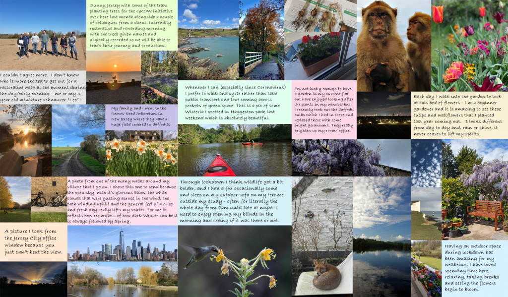 Composite of staff entries of 'nature' for World Mental Health Week